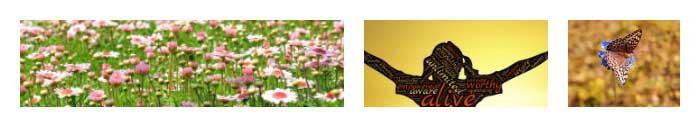 Självkänsla-blommor