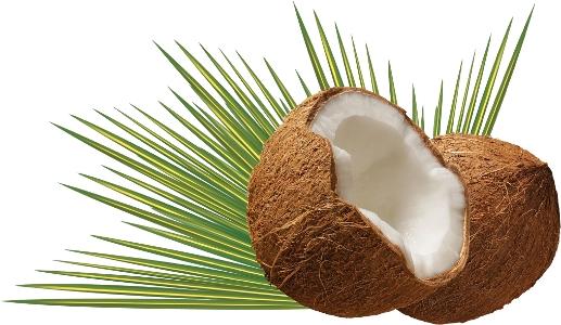 kokosolja nyttigt-670-300