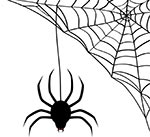 Drömma om spindlar